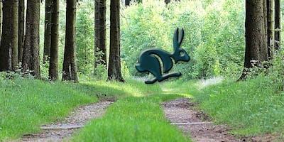Ringwood Rabbit Run 2019