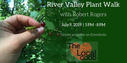 River Valley Medicinal Plant Walk with Robert Rogers (July 9, 2019)