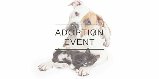 Peace for Paws Ohio Rescue Adoption Event (Dublin)
