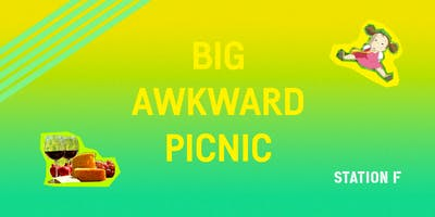 THE BIG AWKWARD PICNIC