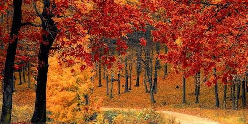 Autumn Harvesting