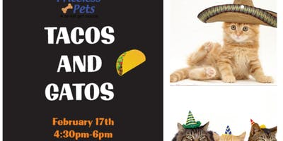 TACOS AND GATOS