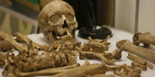 Osteology Workshop