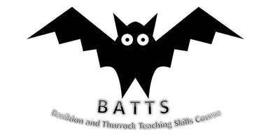 BATTS Session 5 - Teaching When Time is Short