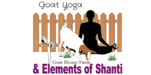 Goat Yoga in Tallahassee