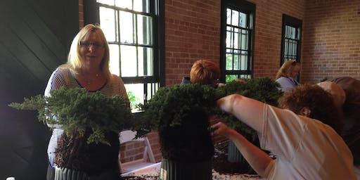 Creating Bonsai from Garden Center Stock
