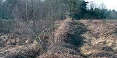 Ashdown Forest Archaeology Walk