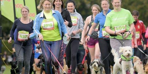 Dog Jog with Carers UK