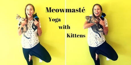 Meowmasté: Yoga with Kittens tickets