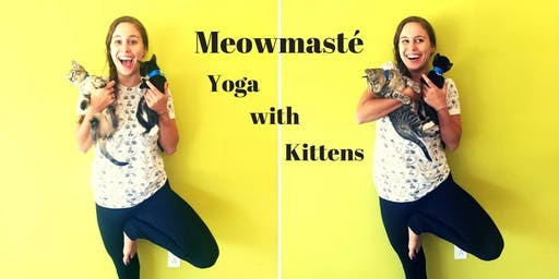 Meowmasté: Yoga with Kittens