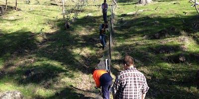 Park Stewardship Morning