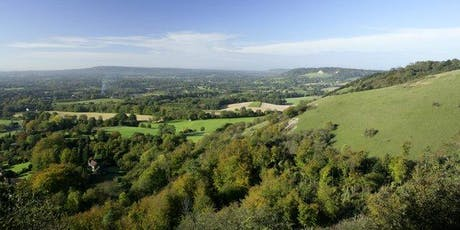 Forest Bathing+. National Trust - Box Hill, Surrey tickets