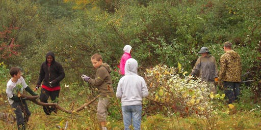 Invasive Plant Removal Drop-In - October 24