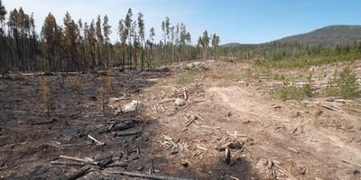 Wildfire Mitigation Conference