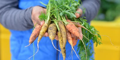 The Edible Garden: growing food with young people