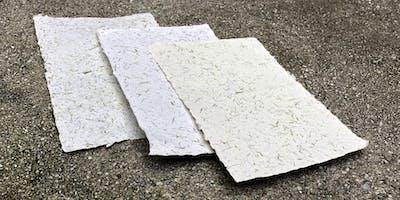 Invasive Plants Paper Workshop