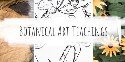 Botanical Art Teachings