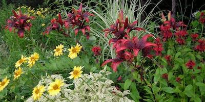 Free Garden Workshops - Create a Cut Flower Garden