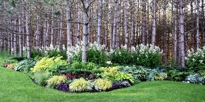 Free Garden Workshops - Sensational Shade Perennials