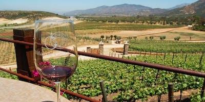 Pláticas y Pruebas: Valle de Guadalupe Wine Tasting