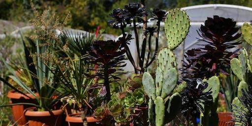 Henstead Exotic Garden Photo Walk