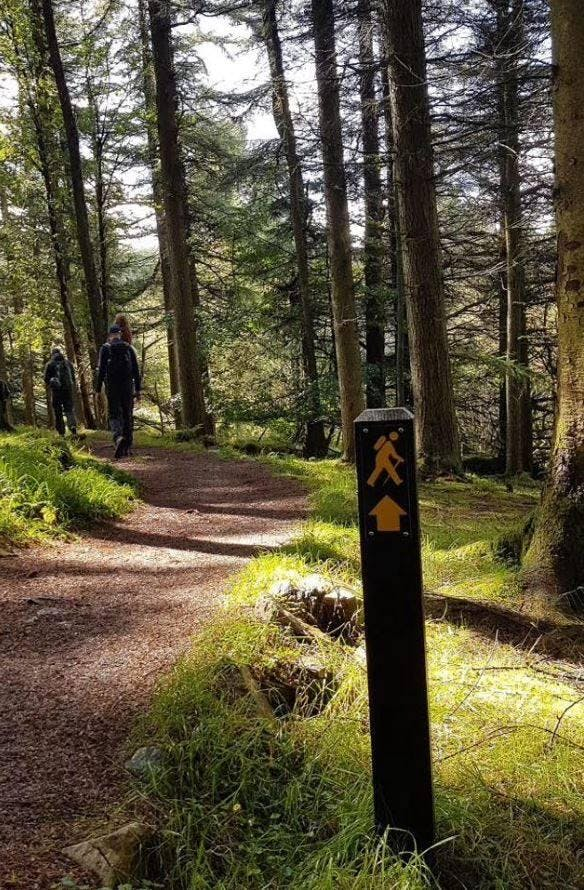 Cruagh Loop Walk