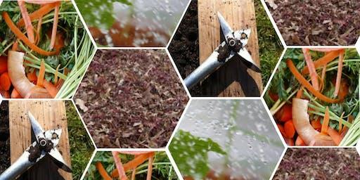 FREE WORKSHOP: Composting Basics