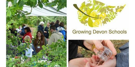 Exeter Growing Devon Schools  Autumn Twilight Session tickets