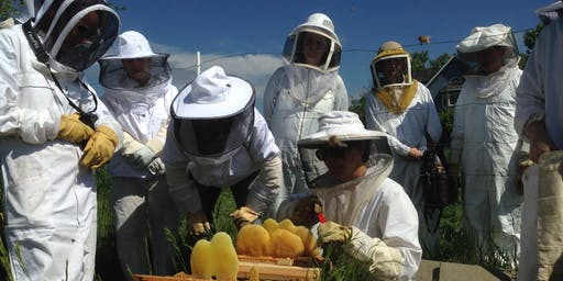 Growing Gardens Beekeeping Class Series