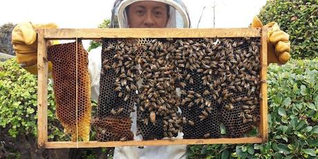 Keiki Pollinator Program tickets