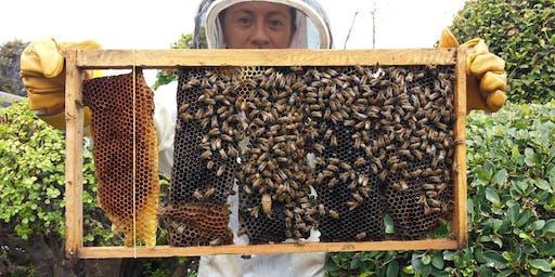Keiki Pollinator Program