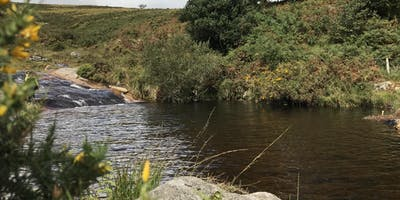 Walk & Wild Swim (Dartmoor Walking Festival)