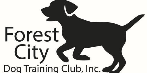 Intermediate/CGC and Advanced CGCA Obedience Class
