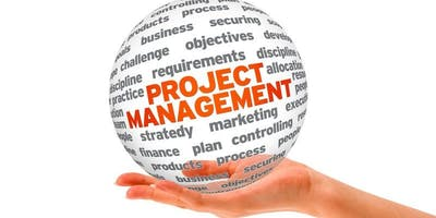 Project Management and Excel Skills Training