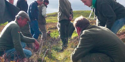 Fox Snaring and Corvid Cage Trapping Training Day