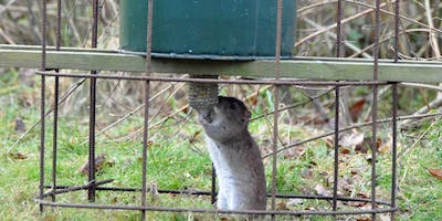 Rodenticide Training Day