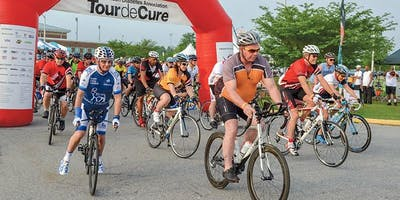 Wine Country Tour de Cure