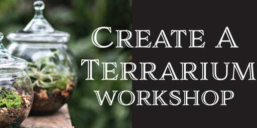 Create a Terrarium Workshop