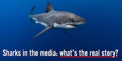 Sharks in the media: what\