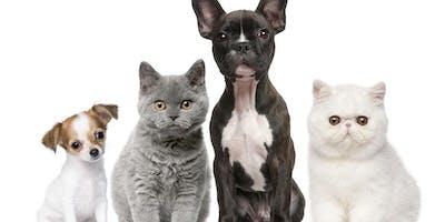 Healthy Pets Workshop