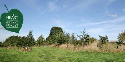Woodland Walk: Introducing...College Wood Walk