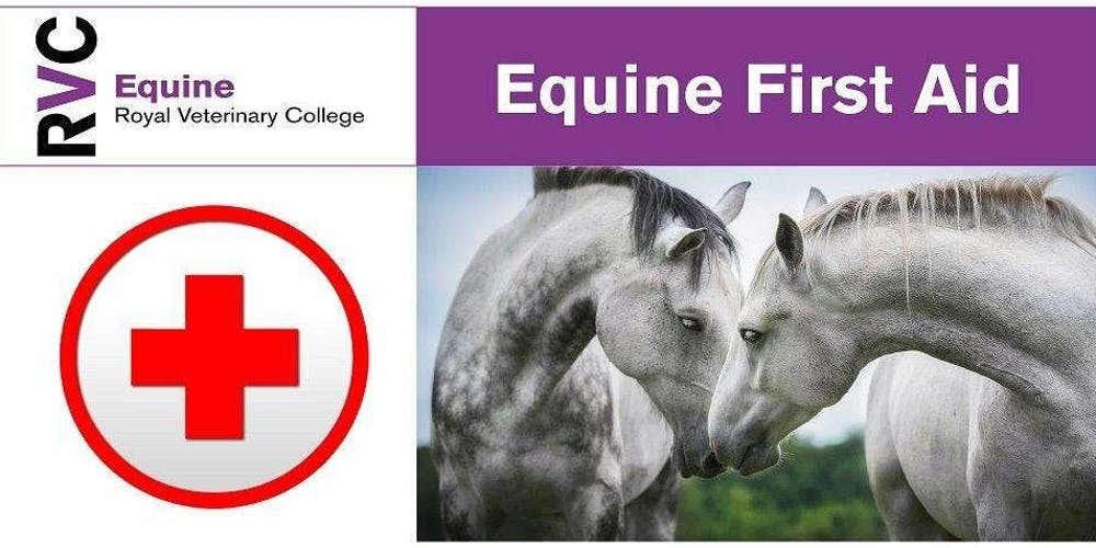 Rvc Campus Map.Rvc Equine First Aid Day Tickets Sat 9 Mar 2019 At 08 30 Eventbrite