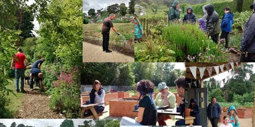 Open Afternoon – visit our Community Training Garden