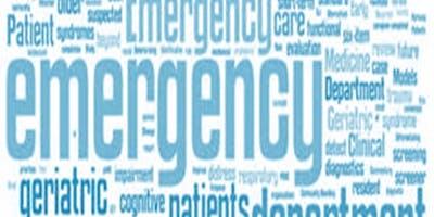 "\""Emerg\""-ing Dynamics - Emergency Conference 2019"