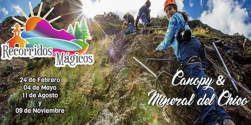 Canopy & Mineral del Chico