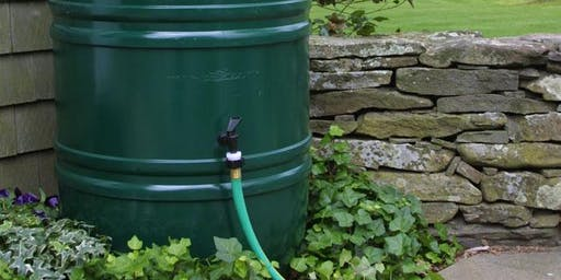 Demonstration: How to save water in your garden (rain catchment)