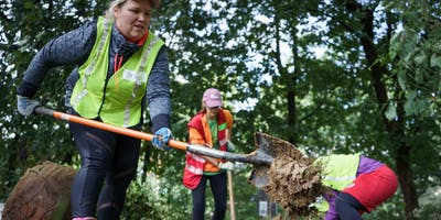 Volunteer Community Tree Planting: Langdon Park Recreation Center