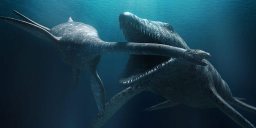 Ocean Talks: Hunting Prehistoric Sea Monsters