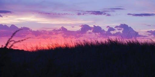 Sunset Trail Running: Waddington (12km)