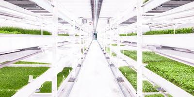Growing Underground urban farm tour